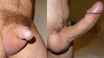 Tamanho do pênis dobrado em 14 dias